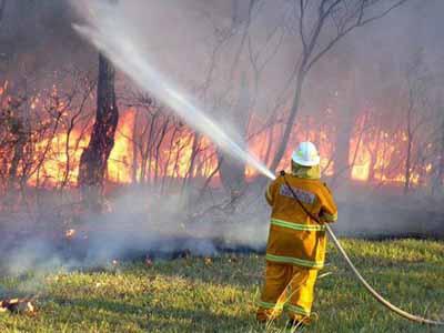 حرائق غابات في استراليا