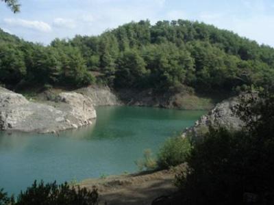 شرقي نهر الوزاني