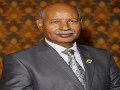 وزير الحكم المحلي الدكتور أبوبكر الهادي