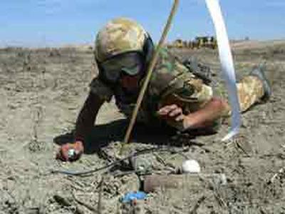 الجيش الجزائري يدمر 4363 لغما